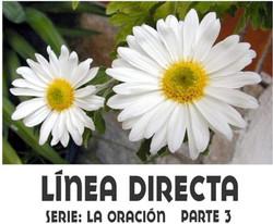 LINEA DIRECTA 3