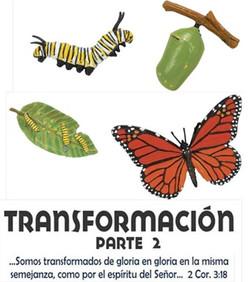 TRANSFORMACION 2