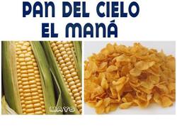 PAN DEL CIELO MANA