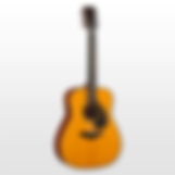acoustic guitars.webp