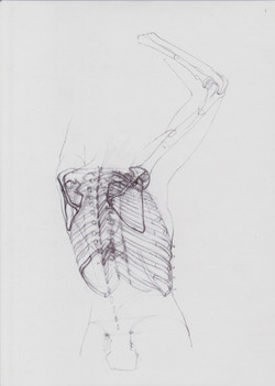 Anatomia d'Elles 4