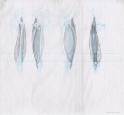 quadriceps 1-300