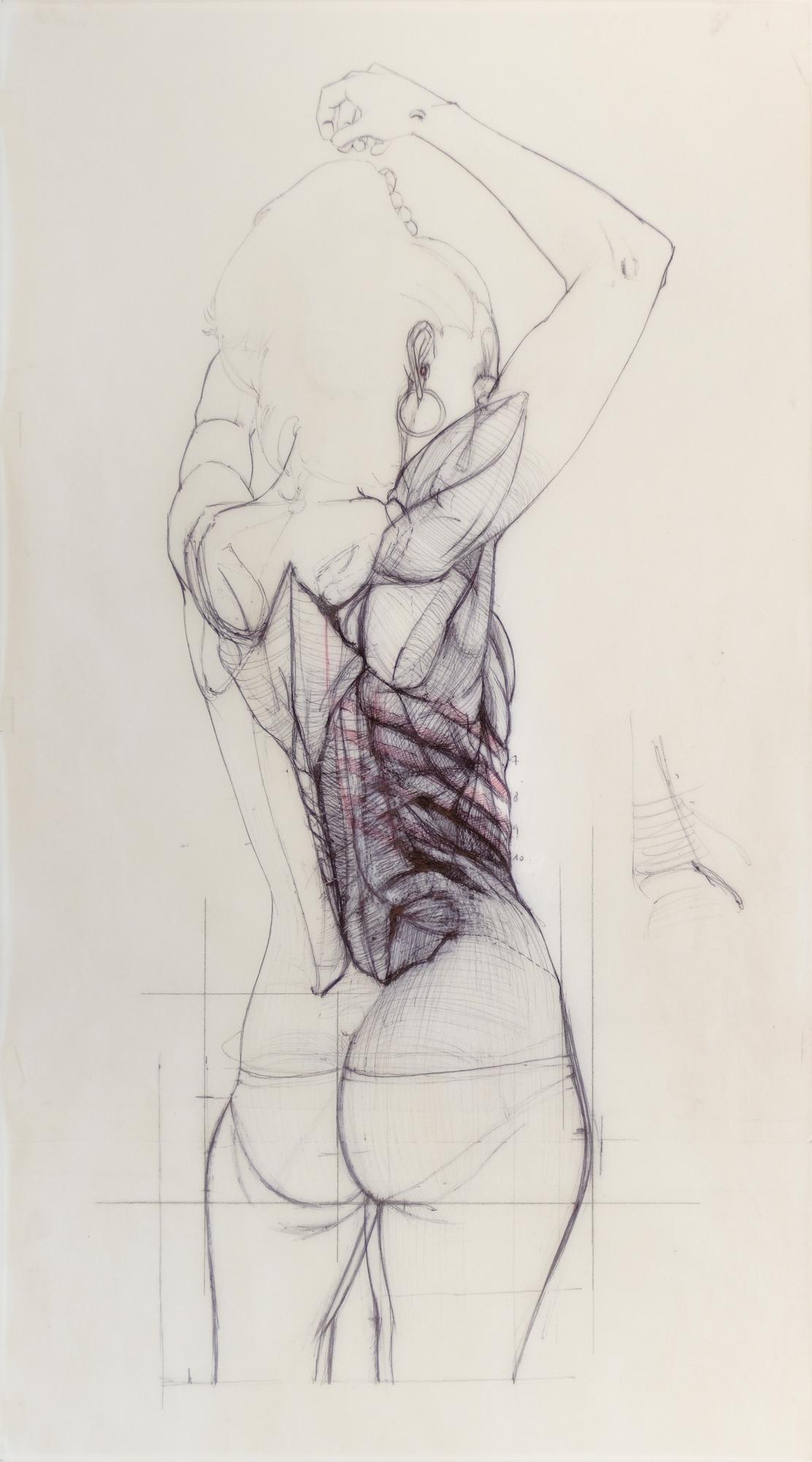 Anatomia d'Elles 2