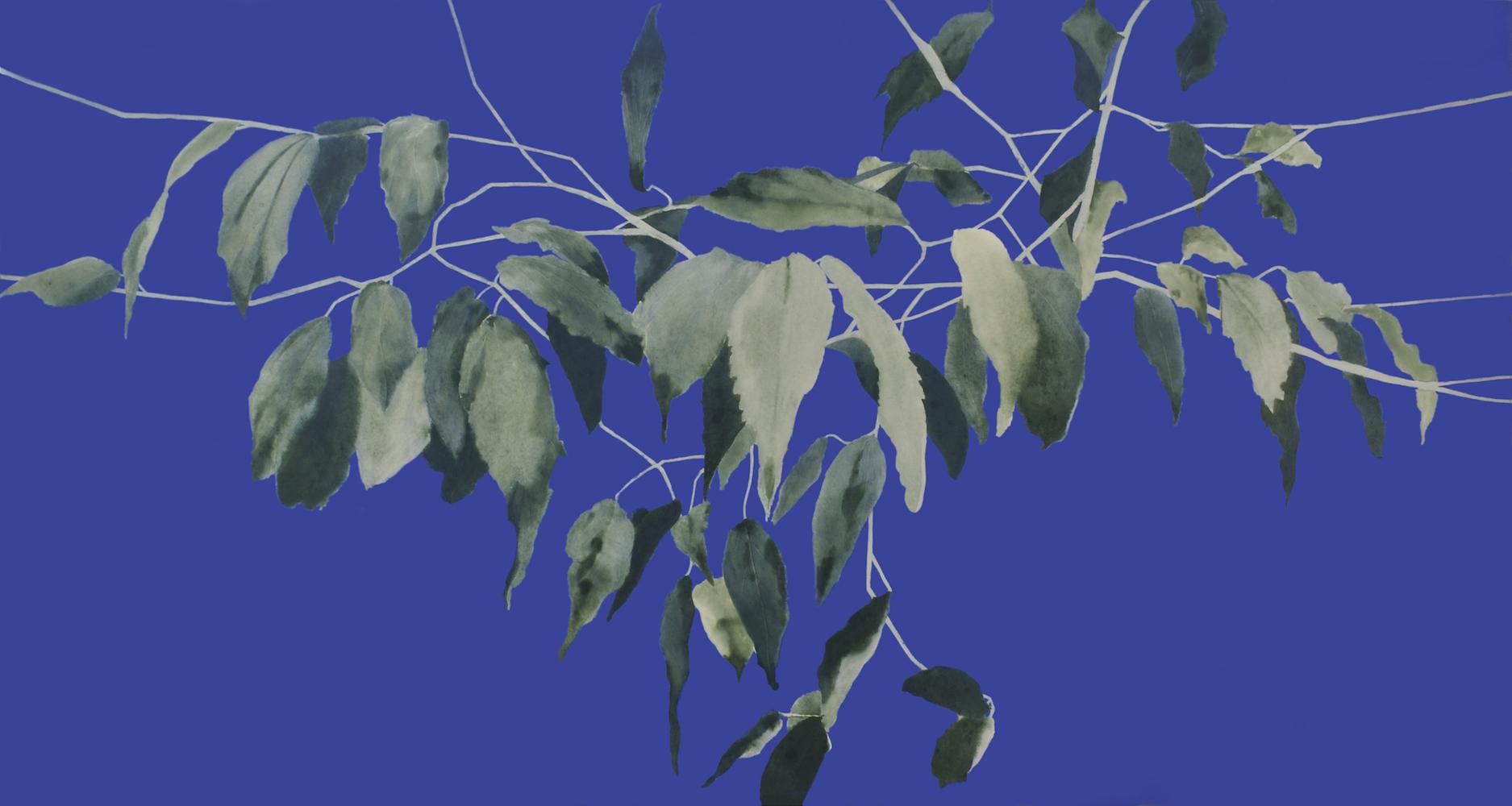 Ritmes verds sobre blau III