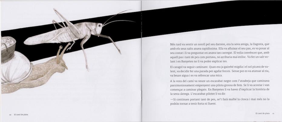 Cami plata-llibre-3