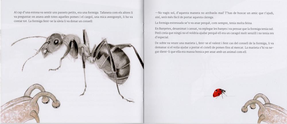 Cami plata-llibre-4