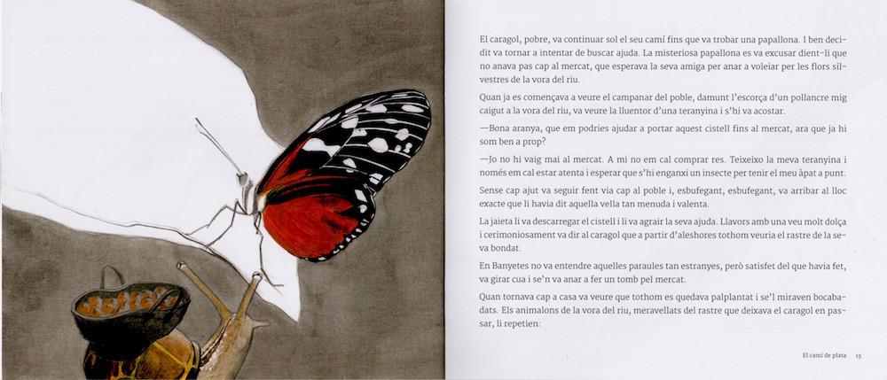 Cami plata-llibre-5