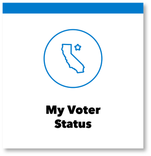 my-voter-status1.png
