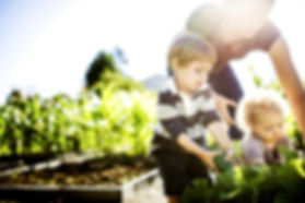 Agricola Ceglia | Sostenibilità