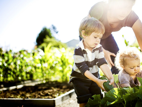 Wills & Probate | Disinheriting Your Children Part 2