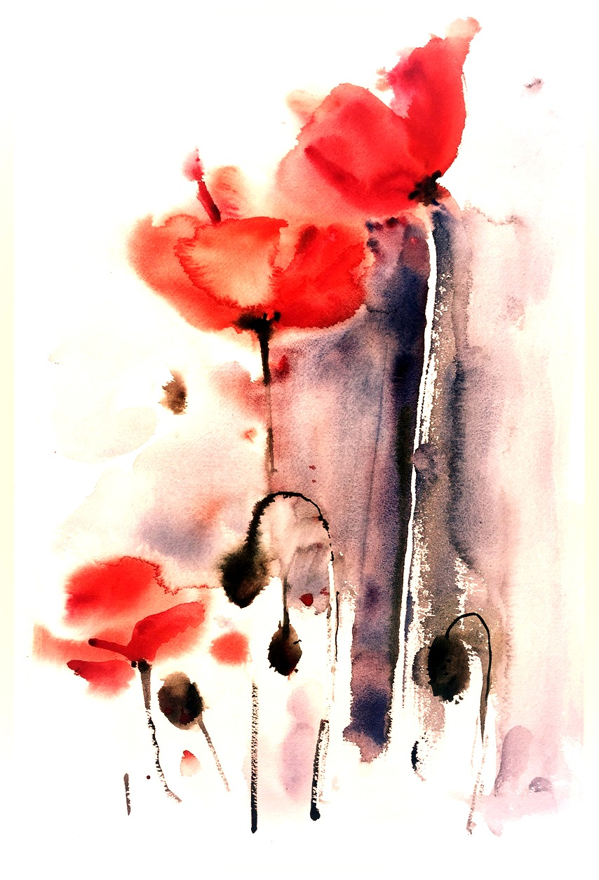 Poppies, warm - print