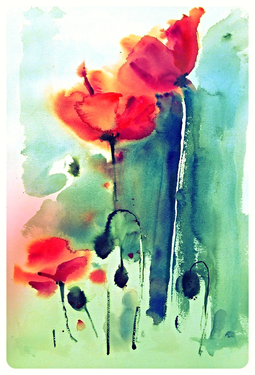 Poppies, green - print