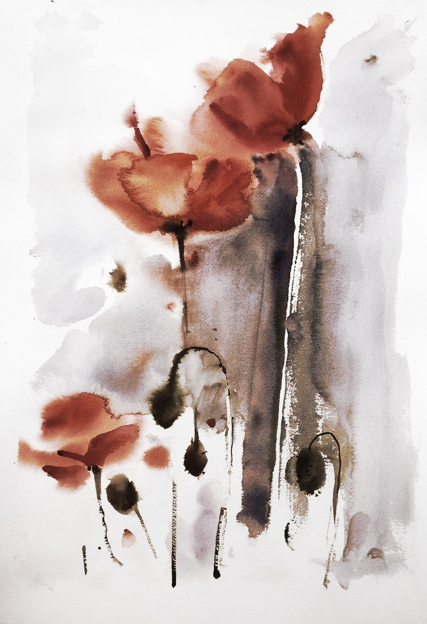 Poppies, rust - print