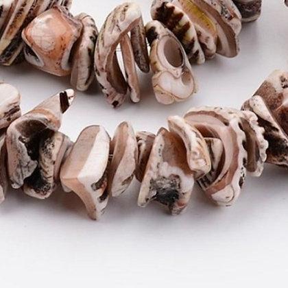 חוט חרוזי שבבי צדף טבעי בגוונים חומים