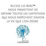 Logo 2 Access Bar.jpg