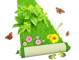 numérologie-tapisvert-tapis_fleurs-chemi