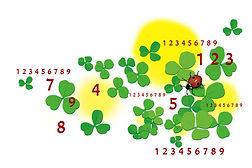 numérologie-porte-bonheur-trèfle-chemin-