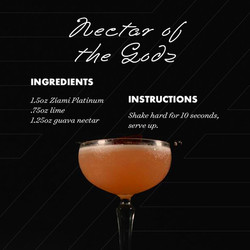 nectar-of-the-godz