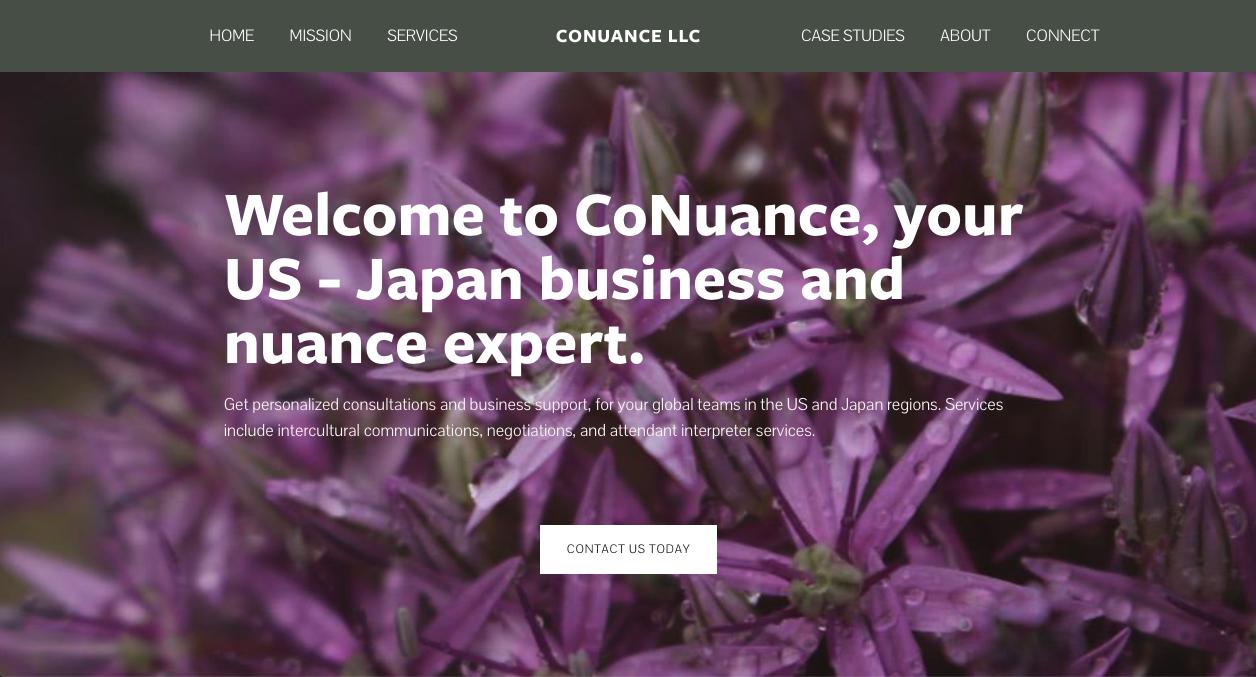 CoNuance, Inc. - Translation Services