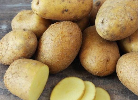 Pomme de terre Agria * (kg)