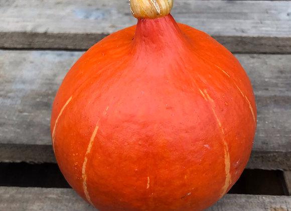 Potimarron Orange VII (Petit) (Pièce (600g à 900g))