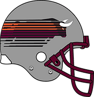 Jacksonville_Bulls_helmet_1984-1985.png