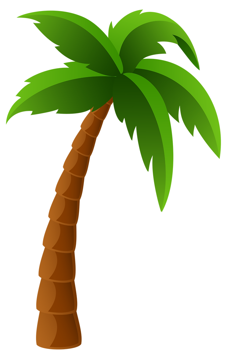 Palm_Tree_PNG_Image_Clipart-2.png