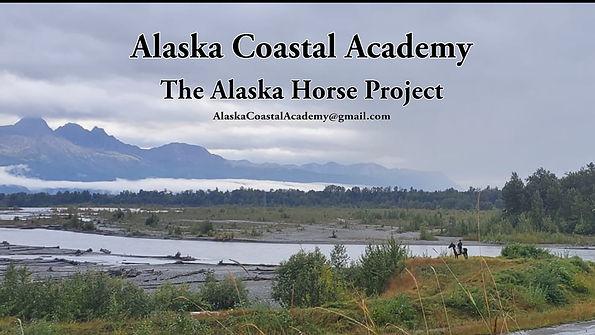 ACA Horse Project.jpg