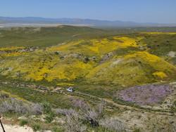 Carrizo Valley, CA