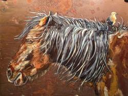 Volsic horse