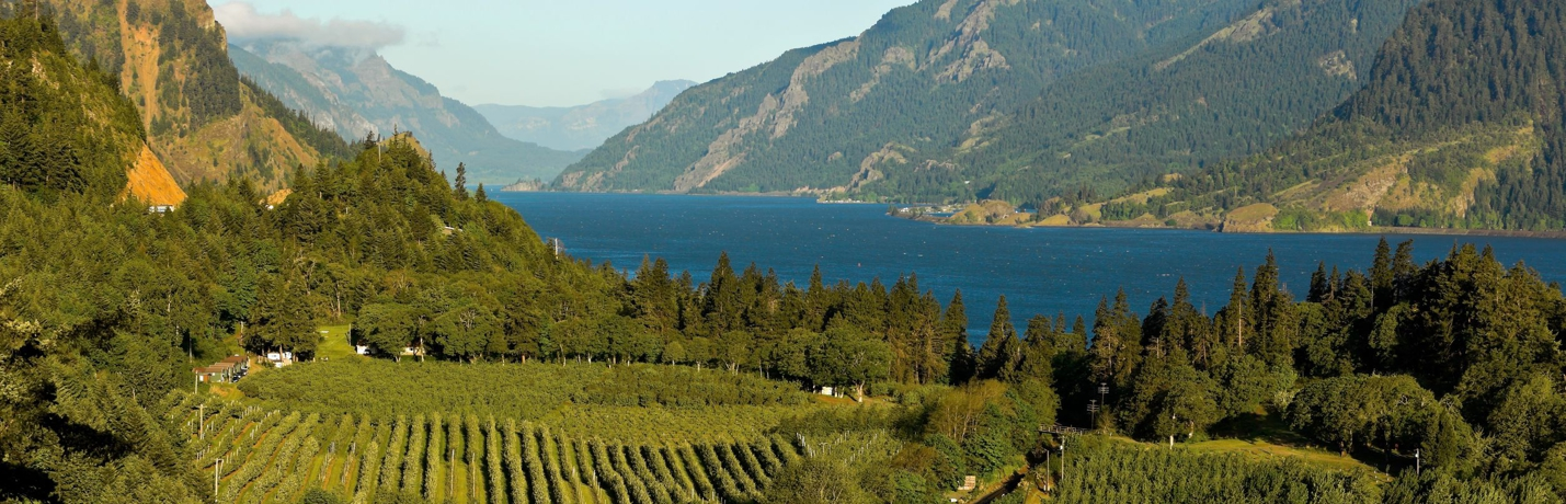 SKAMANIA LODGE  COLUMBIA RIVER GORGE VINEYARDS Maximum JPEG CROPPED 1440x460