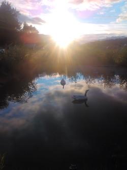 Ranch Pond
