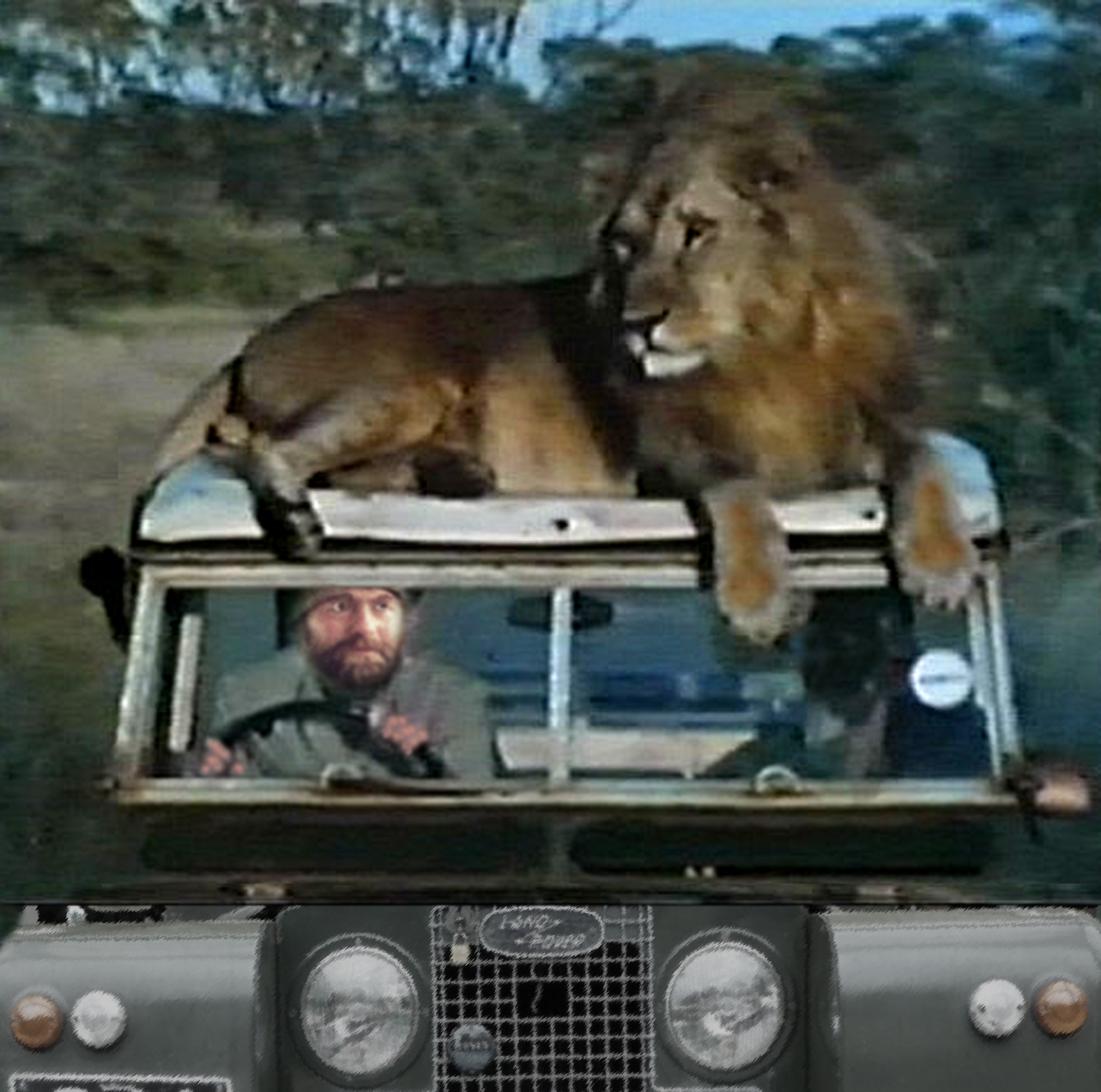 H & the LIon on Rover