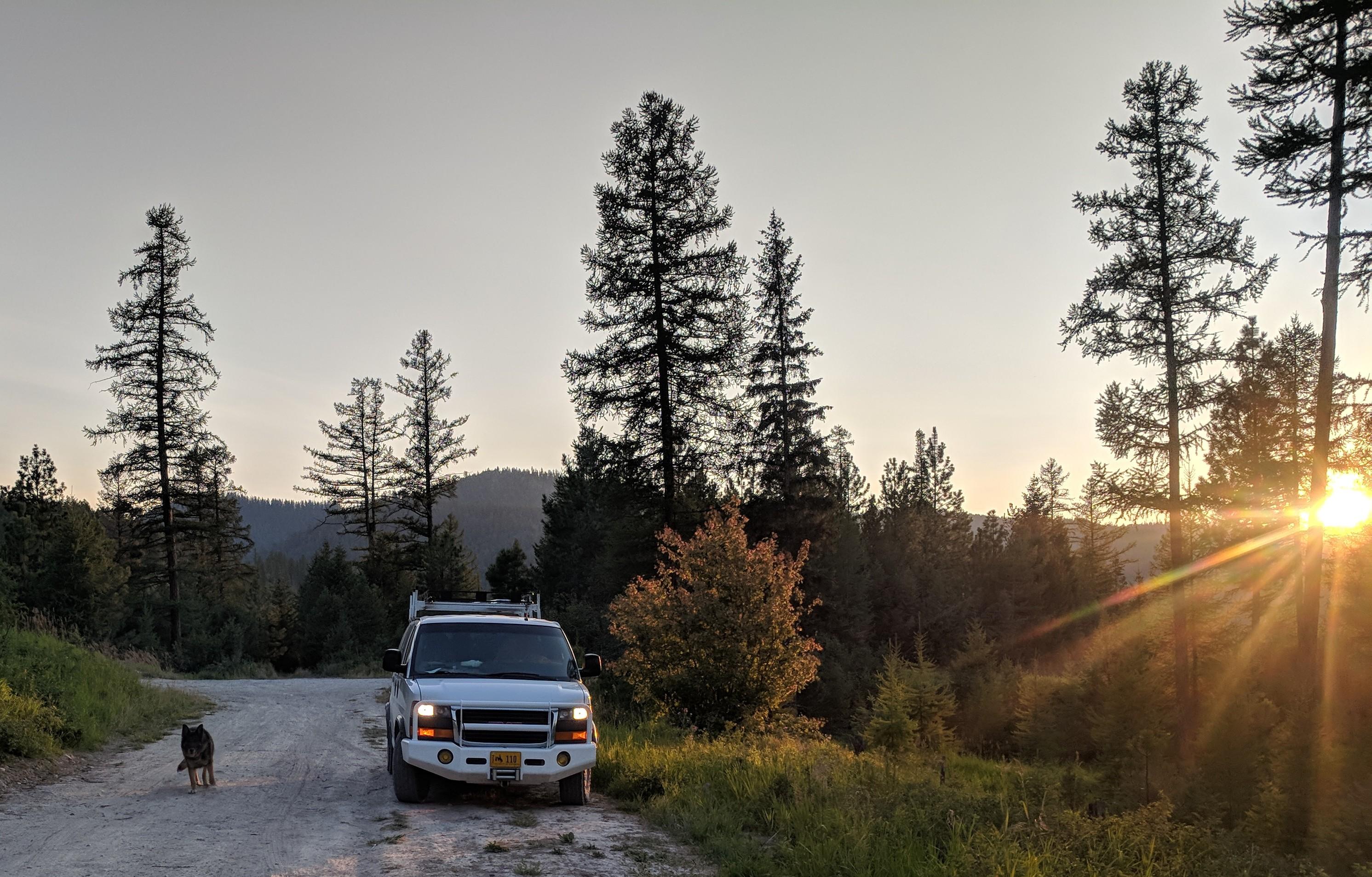Montana logging roads (5)