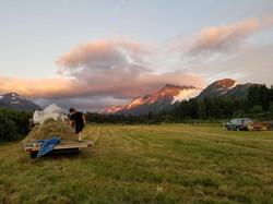 Haying at Portage Ranch