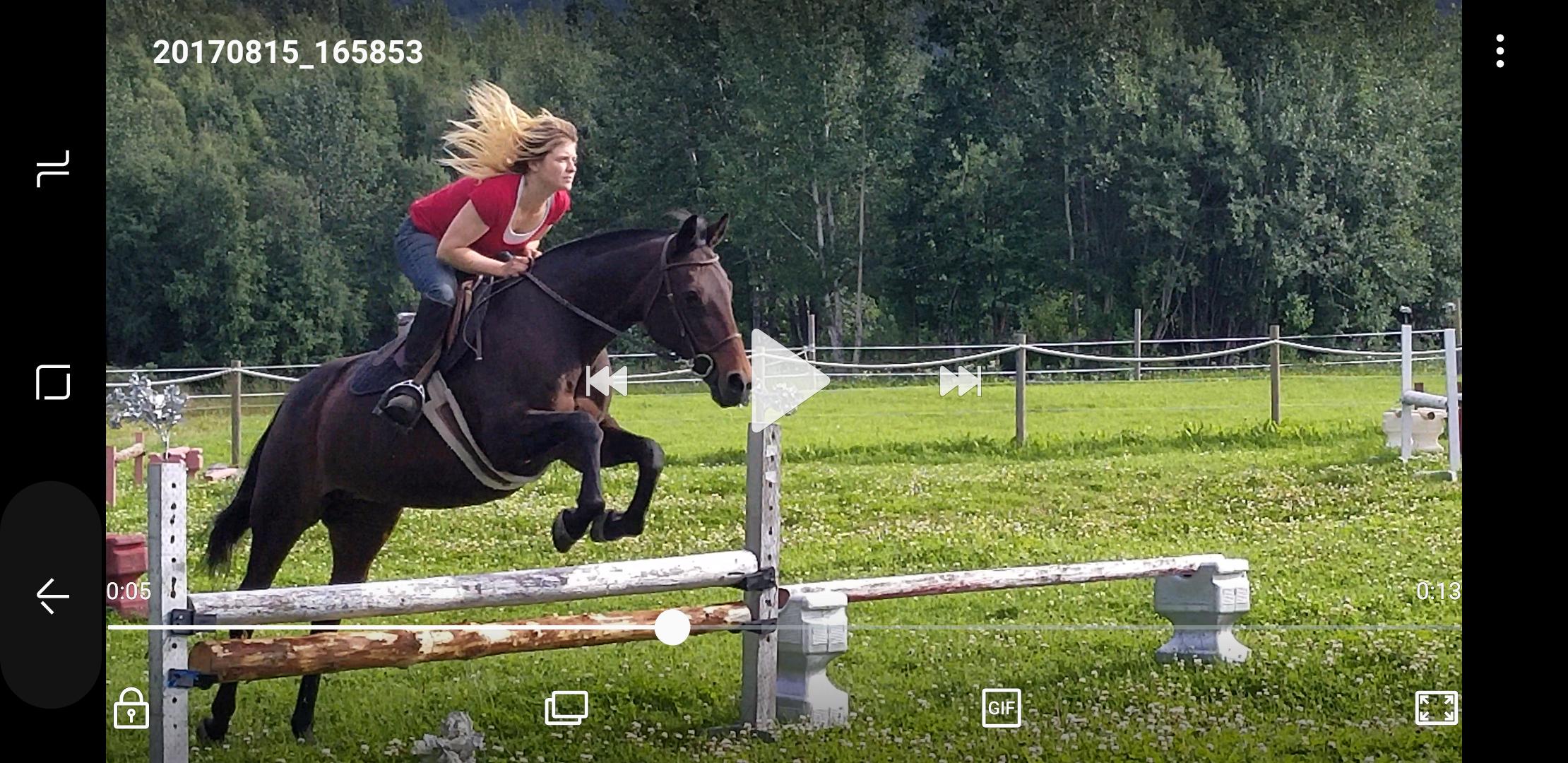 Equestrian Getaway