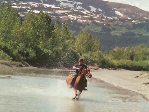 Earth Studies: Alaskan Equine Camp Scholarship Fund