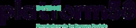 5dbc814c8c248ce84decf3a3_platform58 logo