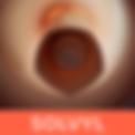 Logo_Solvyl.png