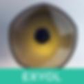 Logo_Exyol.png