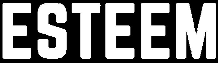 Esteem-watermark_edited_edited_edited_ed