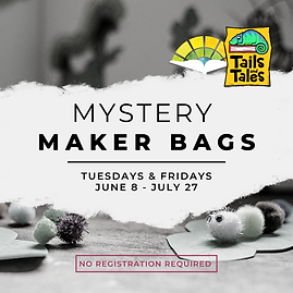 Mystery Maker Bags summer 21.png