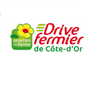logo 3 drive.png