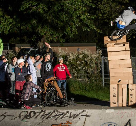 Jumpt the karton | 2014