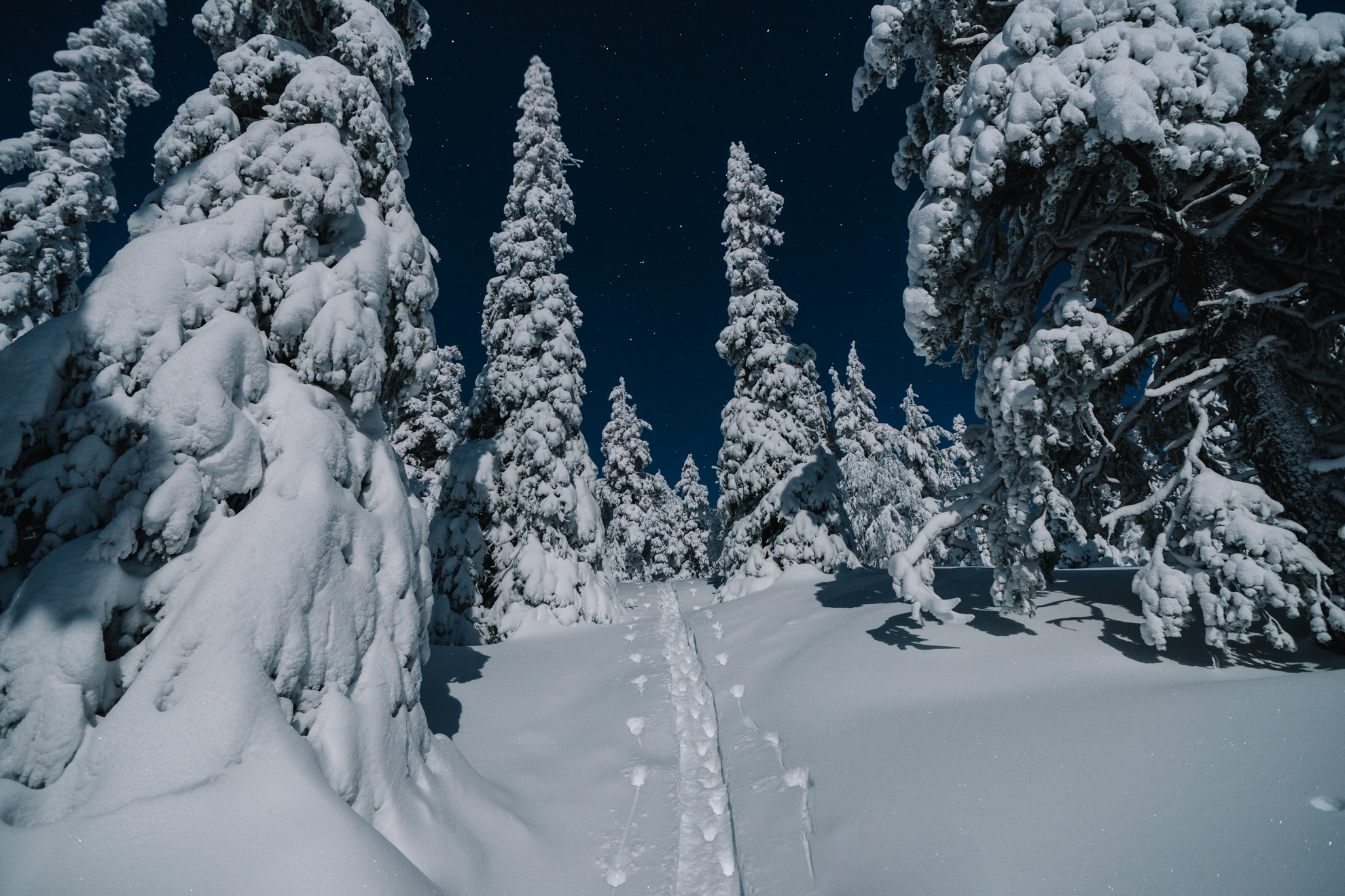 Moonlight over ski tracks
