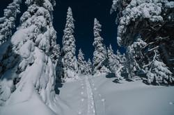 Moonlight over ski tracks