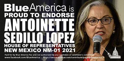 Blue America Endorses Antoinette