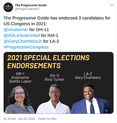 The Progressive Guide Endorses Antoinette Sedillo Lopez for NM-01, Nina Turner for OH-11, Gary Chambers for LA-01