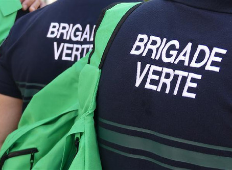 "Action ""Brigade Verte"""