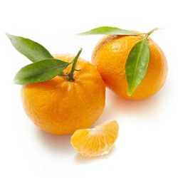 Mandarins Ciaculli